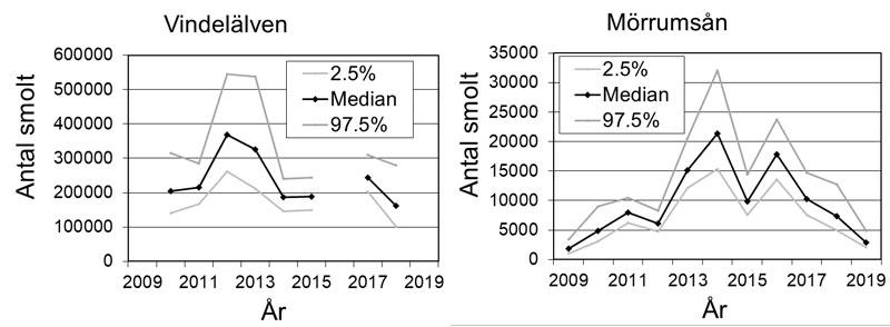 Diagram över uppskattat antal nedvandrande laxsmolt i Vindelälven respektive Mörrumsån över tid