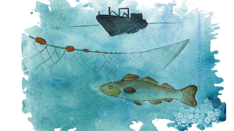 Akvarell som illustrerar fisk och fiske.