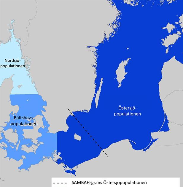 Karta tumlarpopulationer