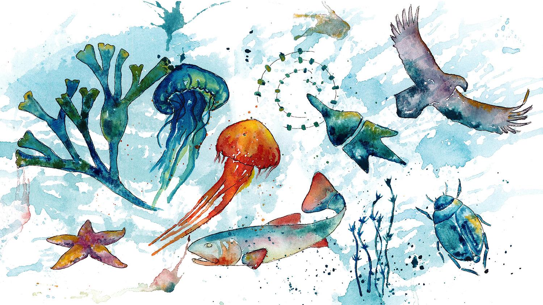 Akvarell som illustrerar mångfald.