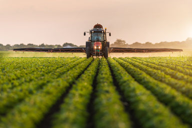 traktor sprider gödsel över fält med grödor