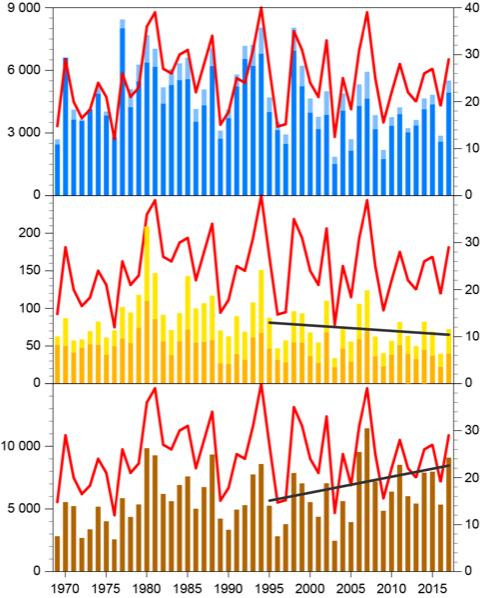 Diagram som visar näringsbelastningen till Öresund 1969-2017