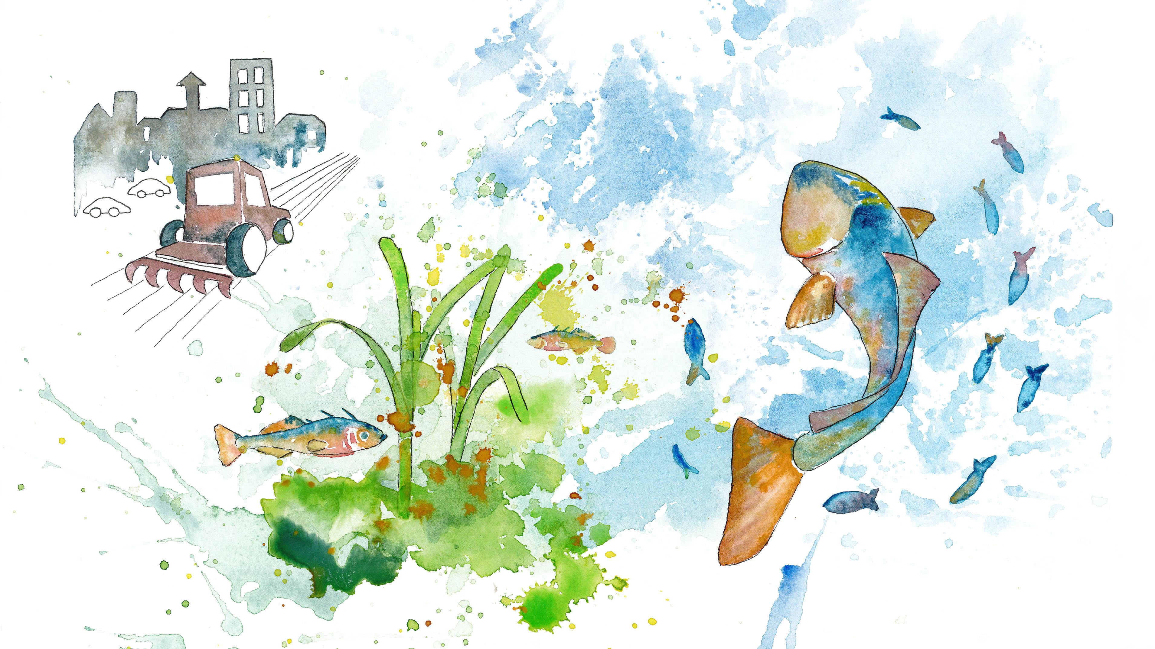 Akvarellillustration av övergödning
