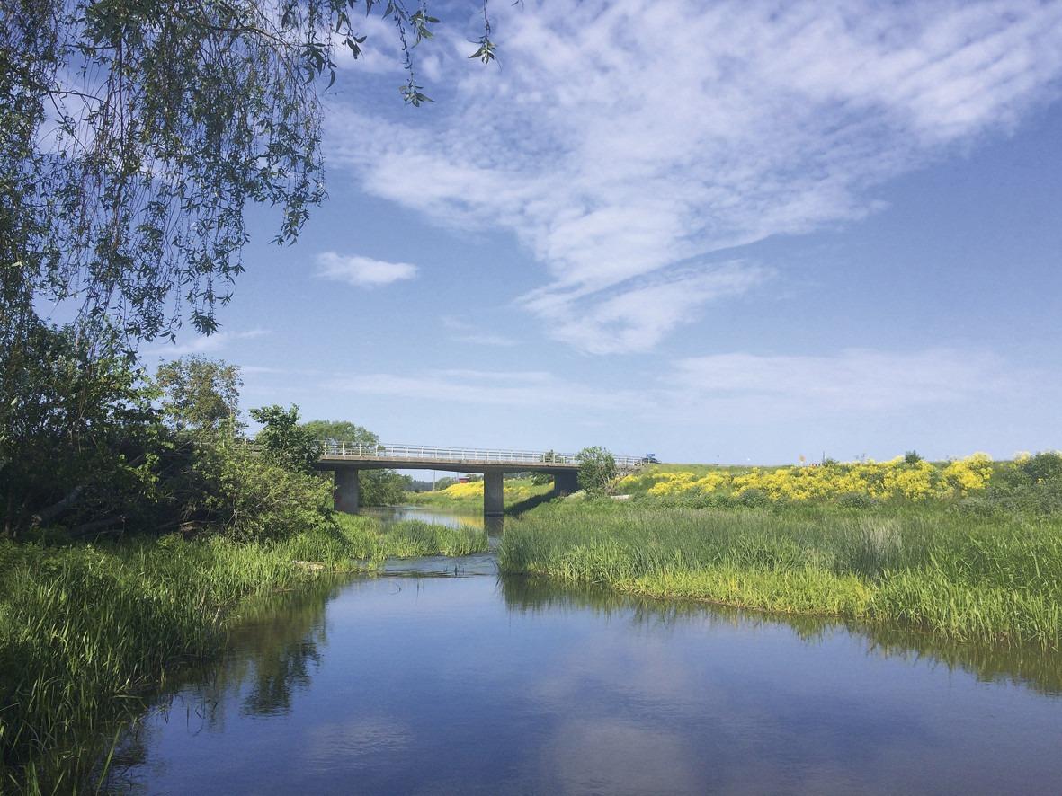 Vattendrag under bro