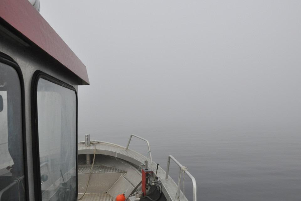 forskningsbåt i dimma