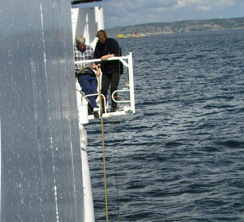 Växtplanktonprovtagning med slang från fartyg.