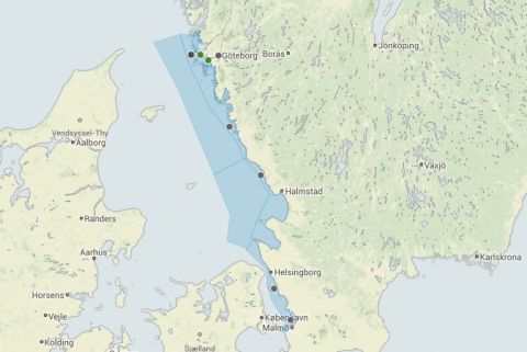 Platser där mätning av inposex förekommer längs Kattegatts kust. De gröna punkterna visar på minskande förekomst medans mätning inte pågått tillräckligt länge vid de grå punkterna för att data ska kunna analyseras.