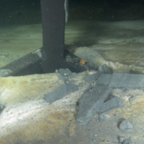 Svavelbakterien Beggiatoa breder ut sig över bottenytan