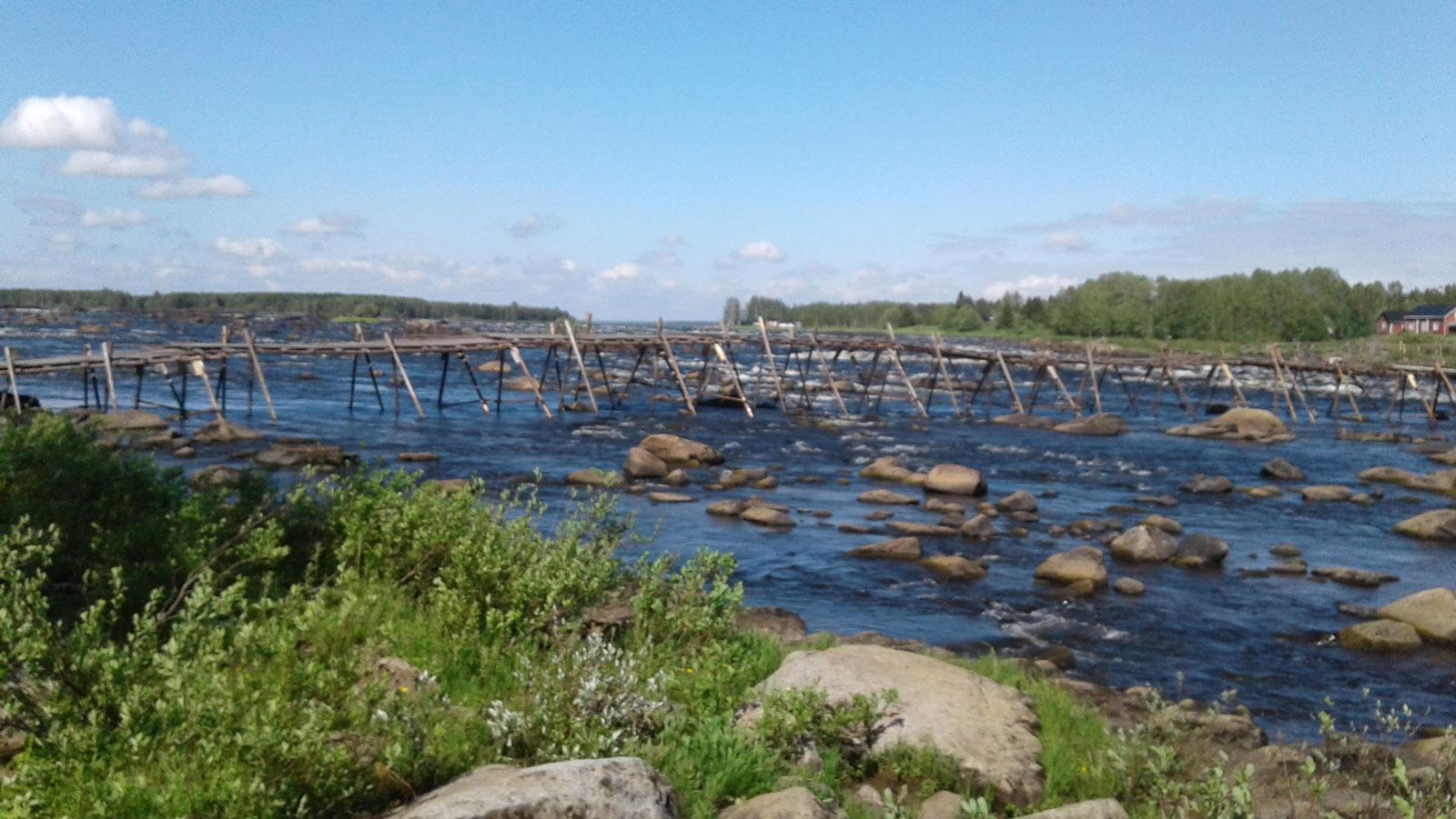 Bild som visar fiskebryggor i Kukkolaforsen, 13 kilometer norr om Haparanda